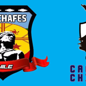 What's in a name? Weichafes or Caciques?